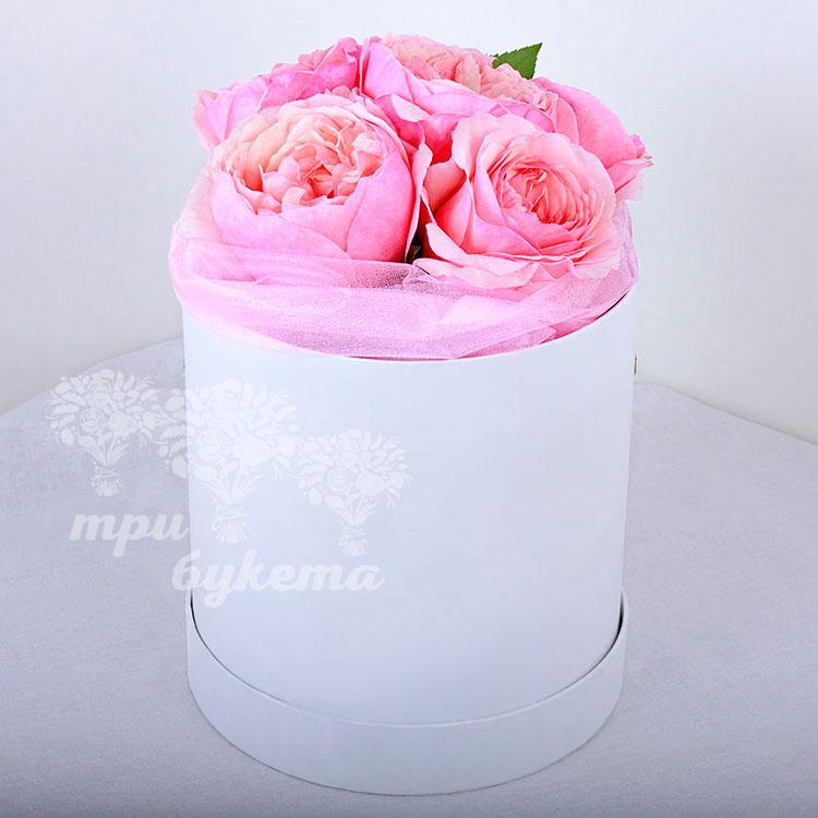 5 пионовидных роз в коробке